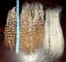Example of Doll Hair